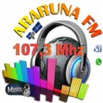 Logo da emissora Araruna FM