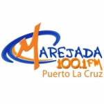 Logo da emissora Radio Marejada 100.1 FM