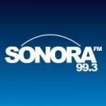 Logo da emissora Radio Sonora 99.3 FM
