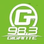 Logo da emissora Radio Gigante 98.3 FM