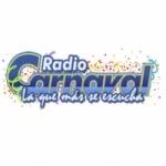 Logo da emissora Radio Carnaval 104.5 FM