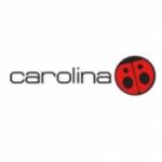 Logo da emissora Radio Carolina 91.3 FM