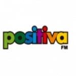 Logo da emissora Radio Positiva 101.3 FM