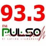 Logo da emissora Radio Pulso 93.3 FM