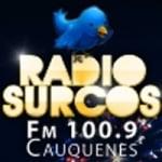 Logo da emissora Radio Surcos 100.9 FM