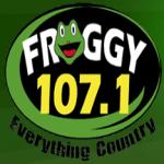 Logo da emissora WFFG 107.1 FM