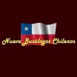 Logo da emissora Radio Busologos Chilenos On Line