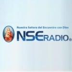 Logo da emissora NSE Radio 106.7 FM