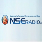 Logo da emissora NSE Radio 107.3 FM