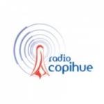 Logo da emissora Radio Copihue FM 102.1 FM