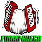 Logo da emissora Forró Brega Oficial