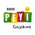 Logo da emissora Radio Péyi 101.1 FM