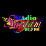 Logo da emissora Radio Sargam 89.3 FM