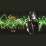 Logo da emissora Rádio Roteiro Amazônico