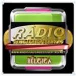 Logo da emissora Rádio Saudade do Sertão Bélgica