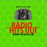 Logo da emissora Rádio Hits Ijuí