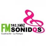Logo da emissora Radio Sonidos 102.3
