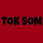 Logo da emissora Tok Som Web Rádio
