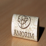 Logo da emissora Amorim Web Rádio