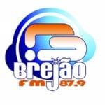 Logo da emissora Rádio Brejão 87.9 FM