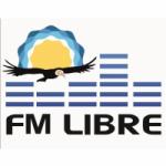 Logo da emissora Radio Libre 93.5 FM