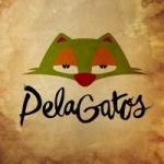 Logo da emissora Radio PelaGatos
