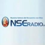 Logo da emissora NSE Radio 91.3 FM