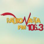 Logo da emissora Radionauta 106.3 FM