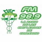 Logo da emissora Radio CUEC 98.9 FM