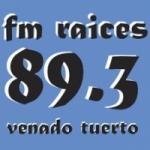 Logo da emissora Radio Raices 89.3 FM