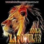 Logo da emissora Radio Popular 100.5 FM