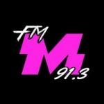 Logo da emissora Radio Master 91.3 FM