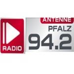 Logo da emissora Antenne Pfalz 94.2 FM