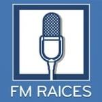 Logo da emissora Radio Raíces 91.7 FM