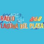 Logo da emissora Radio Laguna del Plata 95.3 FM