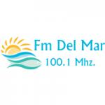 Logo da emissora Radio Del Mar 100.1 FM