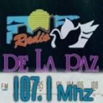 Logo da emissora Radio De La Paz 107.1 FM
