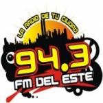 Logo da emissora Radio FM Del Este 94.3 FM
