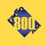 Logo da emissora Radio Nicaragua 800 AM