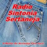 Logo da emissora Rádio Sintonia Sertaneja