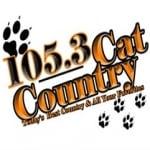 Logo da emissora WJEN 105.3 FM