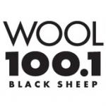 Logo da emissora WOOL 100.1 FM