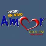 Logo da emissora Radio Amor 89.5 FM