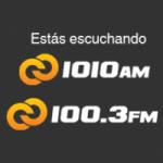 Logo da emissora Radio Cadena 1010 AM 100.3 FM