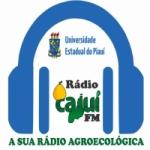 Logo da emissora Rádio Cajuí FM
