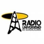 Logo da emissora Radio Universidad de Guadalajara 105.5 FM