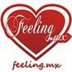 Logo da emissora Radio Feeling