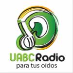 Logo da emissora UABC Radio 95.5 FM