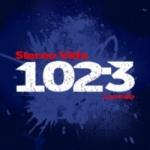 Logo da emissora Radio Stereo Vida 102.3 FM