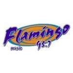 Logo da emissora Radio Flamingo Stereo 93.7 FM